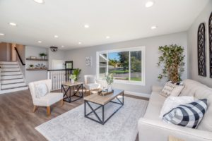 Luxury Home Living Room Area