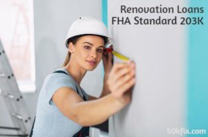 renovation loans fha standard 203k